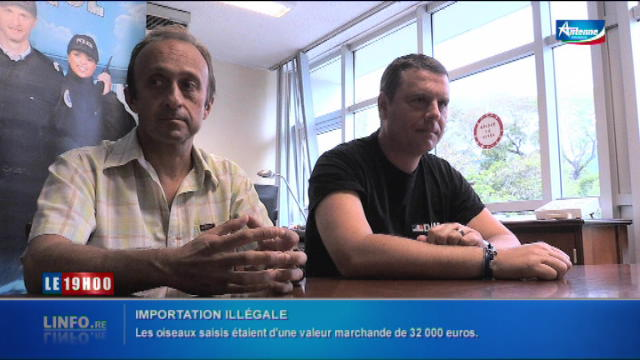 Replay Le 19h00 - Mardi 22 novembre 2016