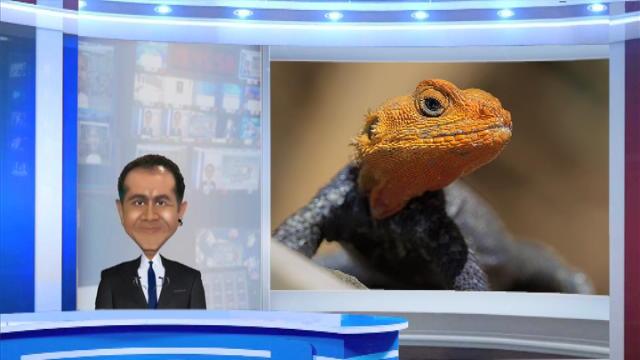 Replay Kanal La Blague - Mercredi 23 novembre 2016