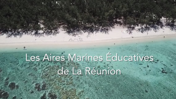 Replay Les aires marines educatives de la reunion - Dimanche 07 juin 2020
