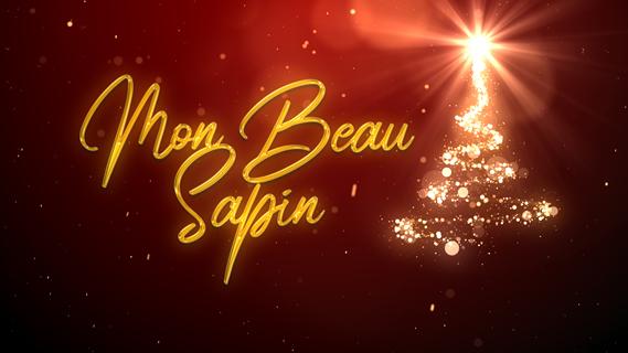 Replay Mon beau sapin - Samedi 21 décembre 2019