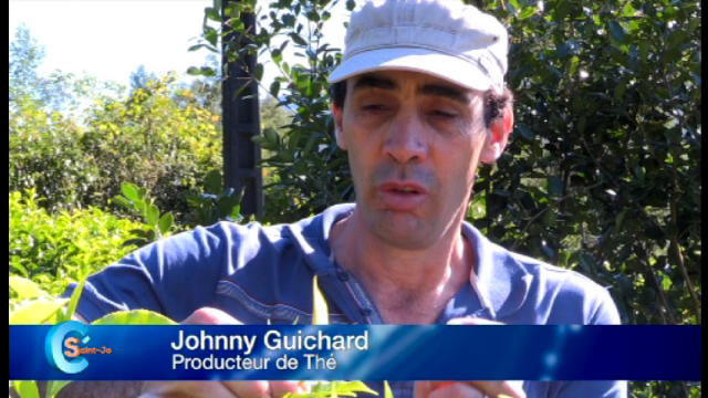 Replay C'St-Jo - Mardi 06 septembre 2016